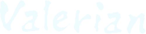 敦賀のメディカルエステ バレリアン-footer-logo
