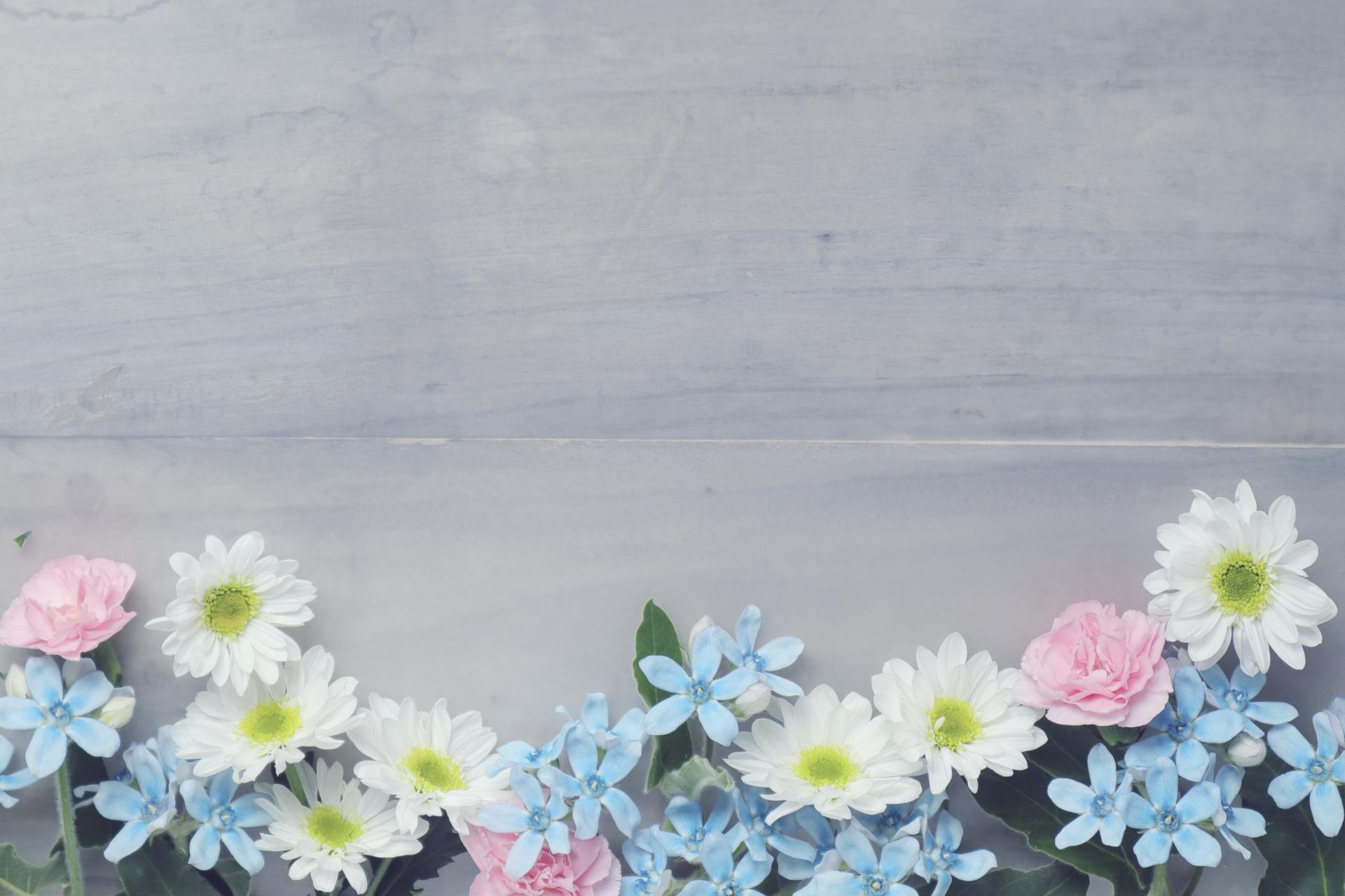 image-テストの投稿 | 敦賀のメディカルエステ バレリアン